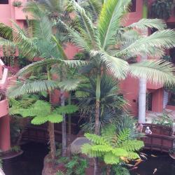 Hotel Abama