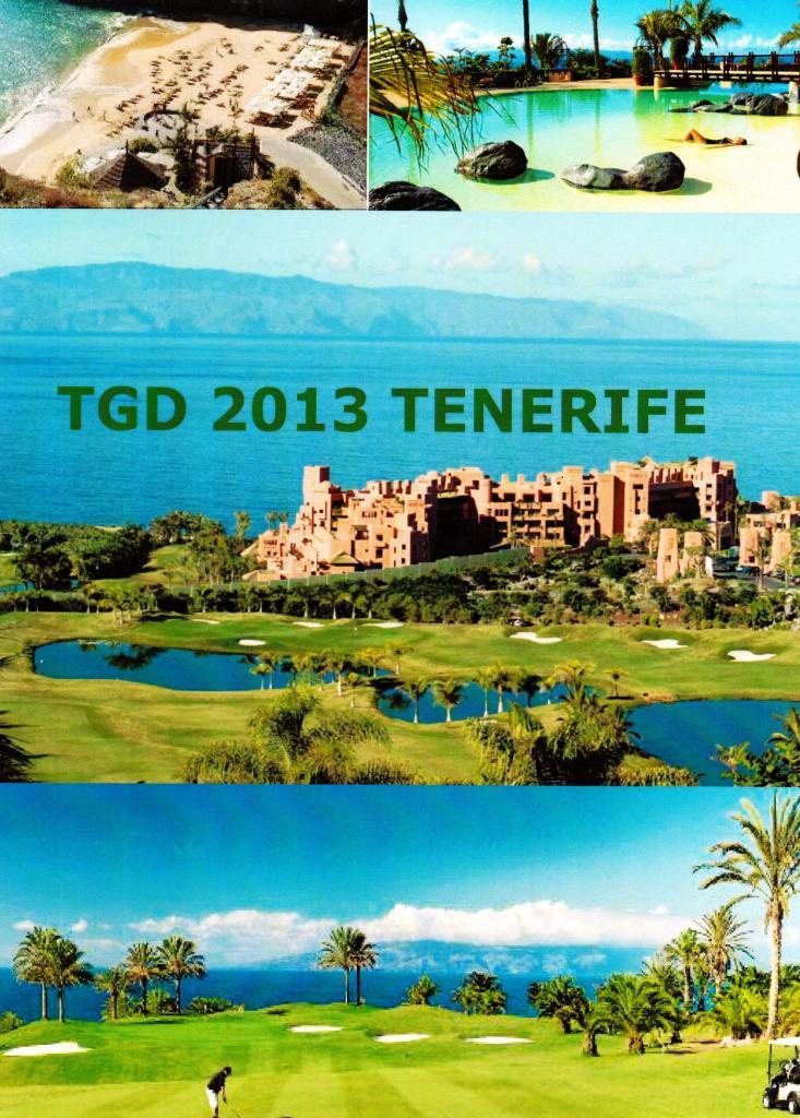 TENERIFE 2013